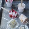 Yogurt Mini Popsicles