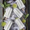 Coconut Lime Mint Paletas