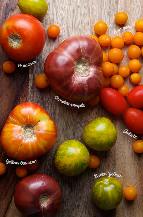 Heirloom-Tomatoes-Variety_Corn-Meal-Crostata_Yes,-more-please!