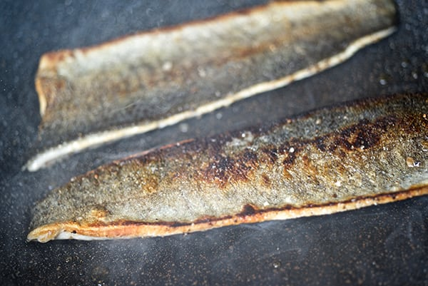 Seared-Rainbow-Trout-with-Cilantro-pesto_How-to-sear-a-trout_Yes,more-please!
