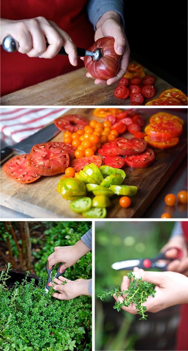 Tomatoe-Crostata_heirloom-tomatoes,-thyme,-great-fresh-seasonal-ingredients