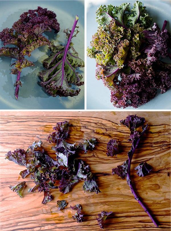 Kale and lentil salad with honey mustard vinaigrette_red kale