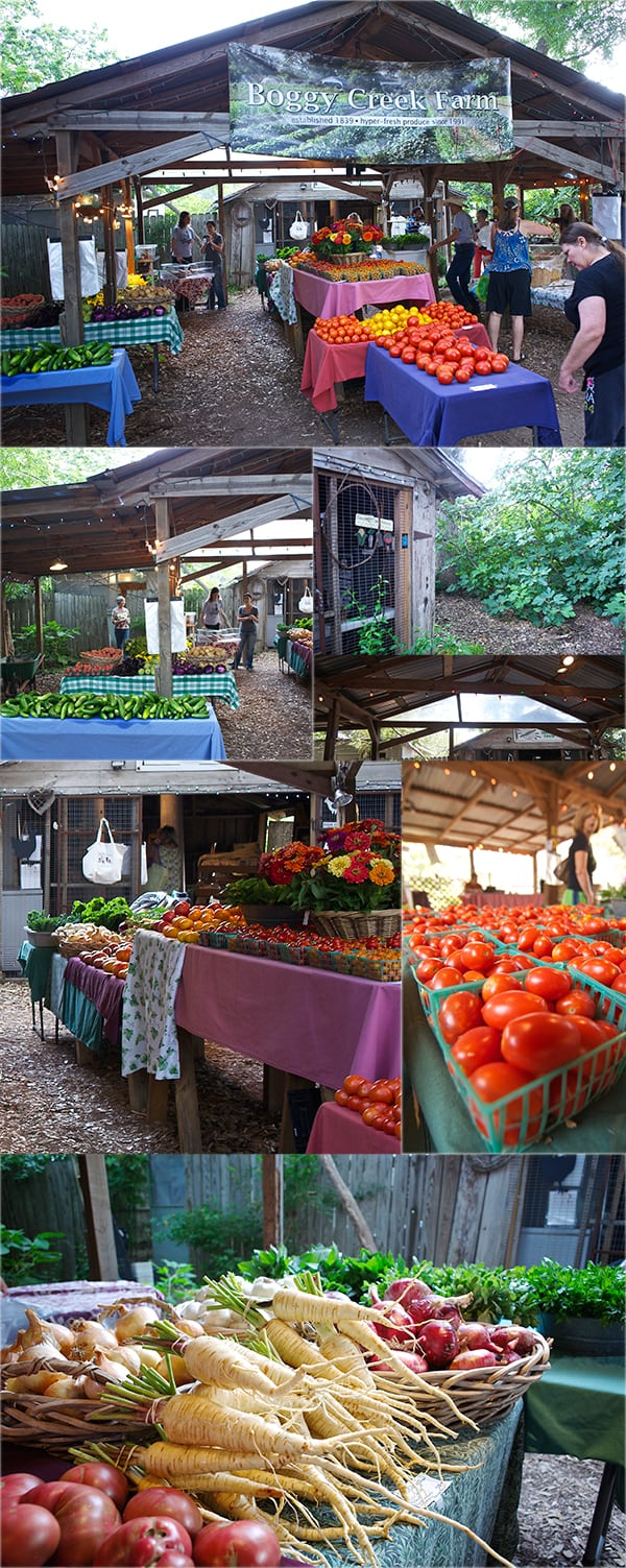 Boggy-_Creek_Farms_I-support-Urban-Farms~Yes,-more-please!