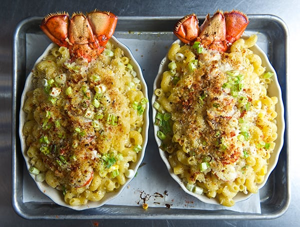 Lobster_Macaroni & Brie Cheese_oven tray