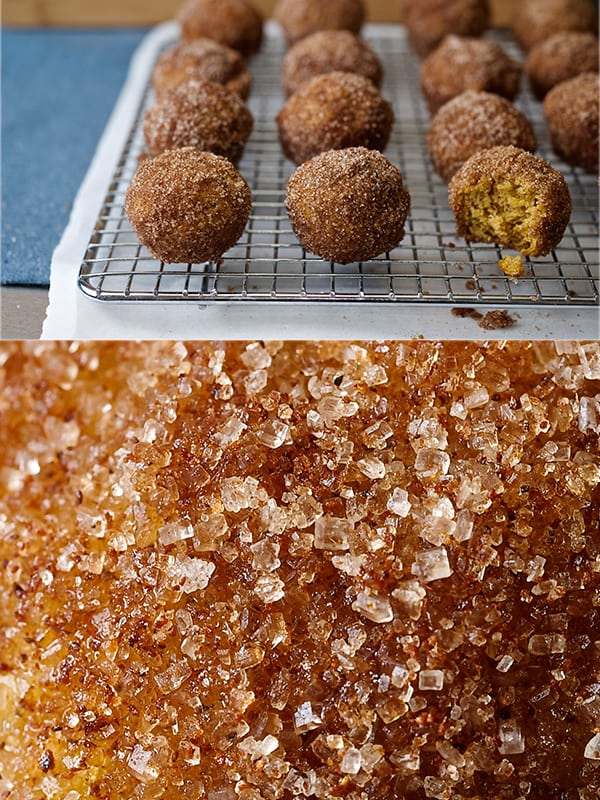Pumpking_doughnut_bites_texture cinnamon-sugar