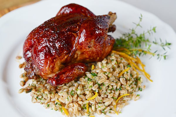 Hibiscus-Orange-Glazed-Cornish-Hens_Yes,-more-please!
