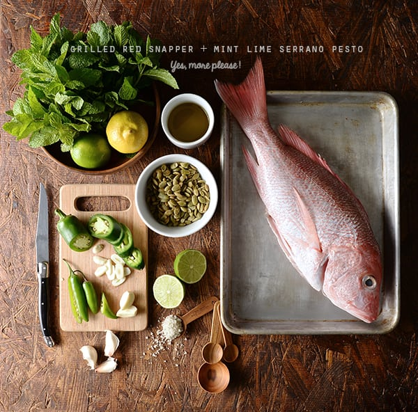 Grilled-Red-Snapper+Mint-and-serrano-pesto_ingredients