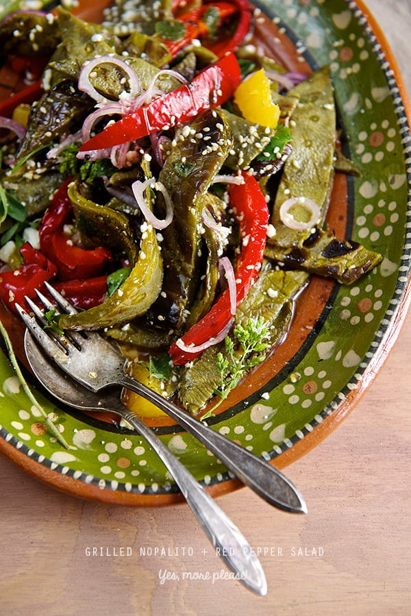 Nopalitos+RED-Pepper-Salad_Yes-more-please!