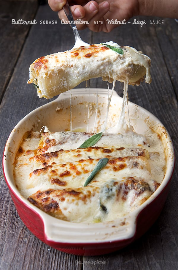 Butternut-squash-Cannelloni-with-Walnut-Sage-Sauce_Yes,-more-please!-