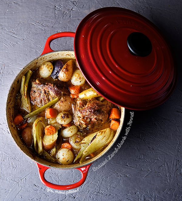 Braised-Lamb-Shanks-with-Fennel_Yes,-more-please!
