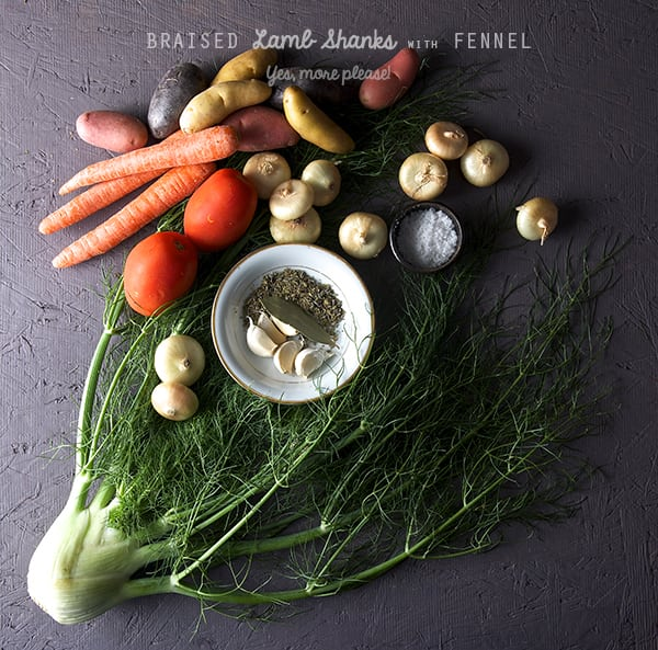 Braised-Lamb-Shanks-with-Fennel_ingredients