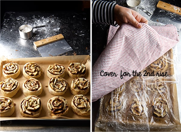 Apple-Cinnamon-Roll_ready-to-second-proof