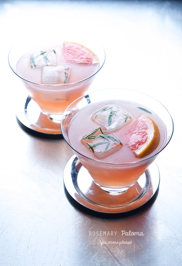 Rosemary-Paloma_Yes,-more-please!