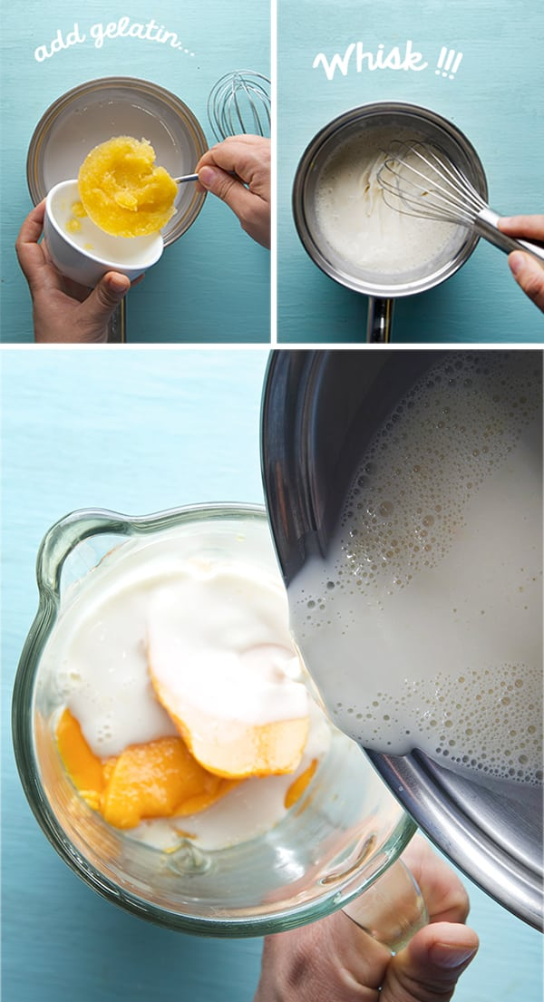 Yogurt-coconut-Mango-Panna-cotta_Mango-Blend