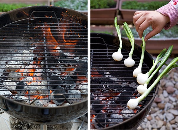 Carne-asada-grilling-onions_Yes,-more-please!