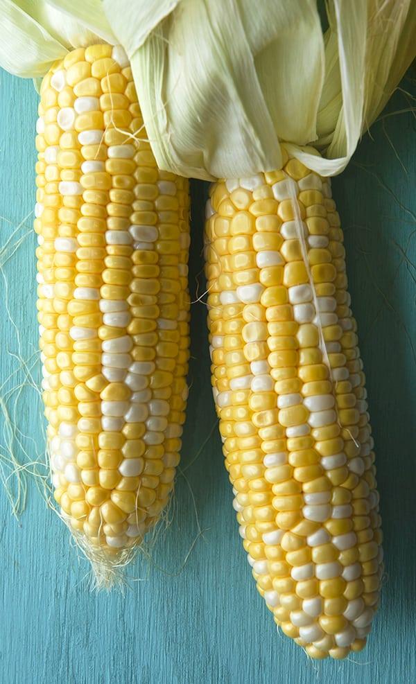 Peach-Sweet-Corn-and-Halloumi-Salad-with-Lemon-Basil-Vinaigrette_Texas-sweet-corn_Yes,-more-please!