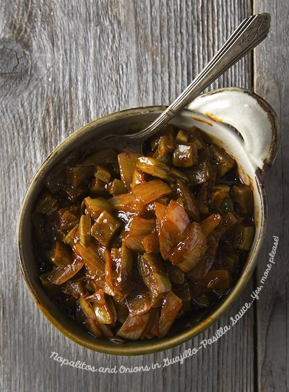 Nopalitos and Onions in Guajillo-Pasilla Sauce_Vegetable-Taco-Filling_Yes,-more-please! copy copy